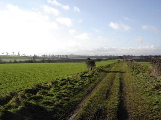Portway Roman Road